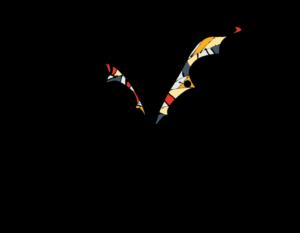 FD Logo FullColor