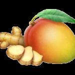 mango ginger wt